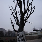 Warsaw: Dead tree turned into a sculptural monument