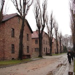 Auschwitz I Museum section
