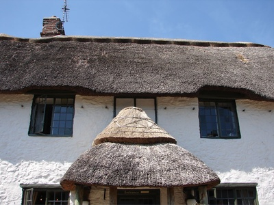 Cottie - the mono-browed, mustache fronted cottage