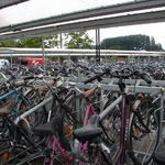 Millions of bikes parked at the train station.