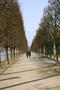 Long walks in the gardens by the Louvre