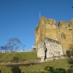 January: We venture out to see Guildford Castle (and pickup Dukey II)