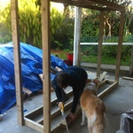 The wood shed construction begins